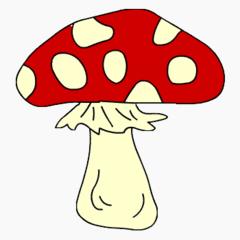 Pilz  - Pilz, giftig, Anlaut F, Fliegenpilz, Illustration