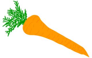Karotte - Anlaut K, Karotte, Gemüse