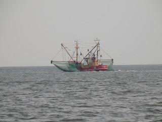 Fischkutter auf der Nordsee - Fischfang, Nordsee, Kutter, Meer, Schiff, Fangnetz