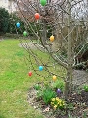 Osterbaum  - Ostern, Ostereier, Frühling, Osterfest, Garten, Osterbaum