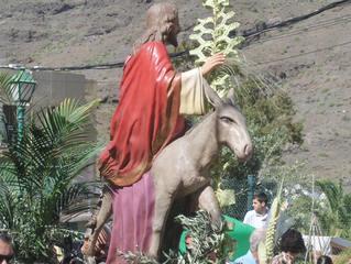 Prozession am Palmsonntag - Prozession, Palmsonntag, Jesus, Esel, Umzug, Palmwedel, Ostern, Karwoche, katholisch, Feiertag, Spanien, religiös, Kirche, Ritual, mimetische Prozession