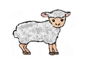 Schaf - Schaf, weiß, Illustration, Nutztier, Wolle, Anlaut Sch