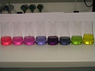 pH-Wert-Reihe mit Rotkohlsaft - Indikator, Rotkohl, Rotkohlsaft, pH-Wert, Pufferlösung, Säure, Lauge, Blaukraut, Blaukrautsaft, Nachweismittel, Neutralisation