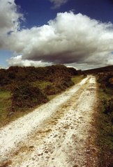 Weg Landweg - Wege, Landweg, Wolken, Horizont, steinig, Meditation, Wales, Gower