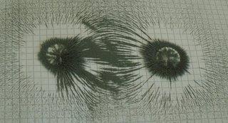 Magnetfeld zweier Magneten - Physik, Magnetismus, Magnetfeld, Magnet, Stabmagnet, Magnetpol, Feldlinien