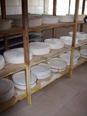 Ziegenkäse #1 - Ziege, Käse, Milch, Molkereiprodukt, reifen, Reifeprozess, Speisen, Geschmack, gesund, Geißkäse, Geisschäs, Ziegenkäse, konservieren, Gerinnung, Zylinder
