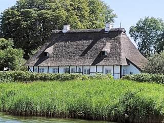 Haus mit Reetdach an der Schlei - Haus, Gebäude, Dach, Reet, Wasser, Schilf, Fenster, wohnen, alt, weiß, grau, grün, Reeth, Reth, Reith, Ried, Riet, Rohr, Dacheindeckung