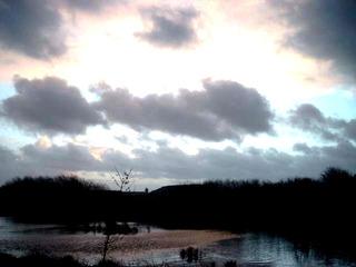 Abendstimmung - Abend, Wolken, Himmel, Licht, grau, Abendrot, Winter, kalt, Wasser, Stimmung, Bäume