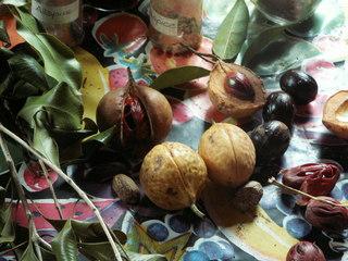 Eine Muskatnuss - Muskatnuss, Gewürz, Nuss, Frucht, Samen, Ernte, Schale