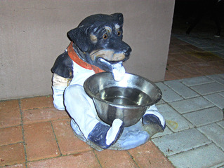 Hundetrinknapf - Hund, Hunde, trinken, Trinknapf, Schüssel, Durst, Wasser, Zunge