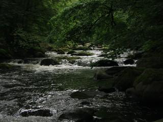 Fluss Bode - Deutschland, Harz, Thale, Fluss, Bode, Bach