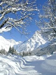 Winter - Weg - Winter, Schnee, Bäume, Weg, Berge, Meditation, Salzburg, Ruhe