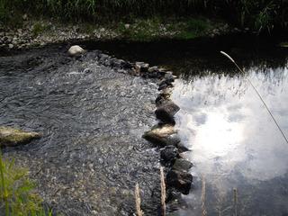 Renaturierungsmaßnahmen #4 - Fließgewässer, Renaturierung, Schwartau, Sohlgleite, Fischwanderung