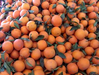 Apfelsinen - Apfelsinen, Obst, Orange, Früchte, Südfrüchte