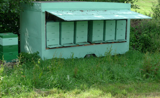 Bienenstock #1 - Biene, Bienenstock, Honig, sammeln, bunt, Nisthöhle, Behausung, Volk, Bienenvolk, Honigbiene, Beute, Magazin-Beute, Bienenzucht, Imkerei, Imker