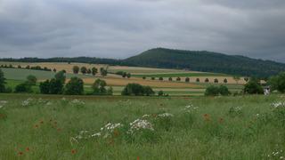 Landschaft Kellerwald #2 - Landschaft, Wolken, Himmel, Gewitterstimmung, Wiese, Felder, Hügel, Bäume, Wald, Schreibanlass, Perspektive, Größenperspektive