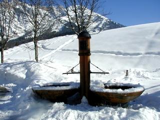 Winter - Brunnen - Winter, Schnee, Brunnen, Spuren, Salzburg, Bäume, Berge