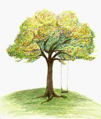Baum mit Schaukel (2) - Baum, Herbst, Schaukel, Zeichnung, Stamm, Ast, Äste, Baumkrone, Anlaut B