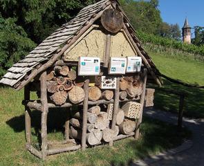 Wildbienenhotel - Bienen, Wildbienen, Bienenhotel, Nisthilfe, Holz, Löcher, Öffnung, Bohrung, Steine, Hohlräume, Tierschutz
