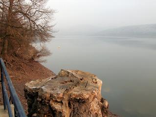 Winter an der Edertalsperre - Edertalsperre, Talsperre, Stausee, See, Wasser, Winter, Stimmung, Dunst, Nebel, grau, Meditation, Baum, Baumstumpf, morsch, Sonnenuntergang