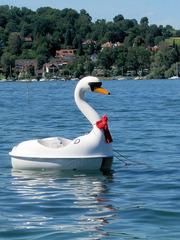 Schwan  - Schwan, Plastik, Boot, Tretboot, lustig, Wasser, See, Freizeit