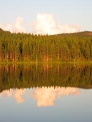 Spiegelung 2 - See, Wasser, Wald, Spiegelung, spiegeln, Schreibanlass, Physik, Symmetrie
