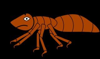Ameise #3 - Ameise, Insekt, Hautflügler