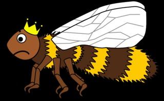 Bienenkönigin #3 - Biene, Insekt, Flügel, Hautflügel, Bienenkönigin