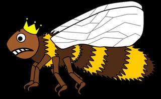 Bienenkönigin #4 - Biene, Insekt, Flügel, Hautflügel, Bienenkönigin, Wörter mit ie, Wörter mit ö