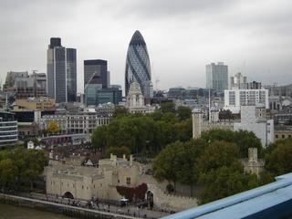 Blick von der Tower Bridge auf London - Tower Bridge, Tower, Guerkin, London, Ausblick