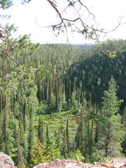 Oulanka Nationalpark  - Oulangan kansallispuisto, Finnland, Nationalpark, wandern, Freizeit, Landeskunde, Nordeuropa, Geografie, karhunkierros, Bärenpfad, Bärenrunde, kallioportti