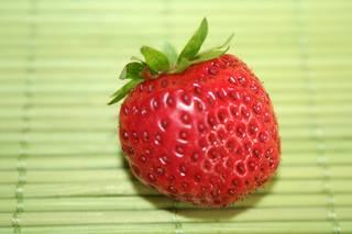 Erdbeere - Erdbeere, Blütenpflanze, Blüte, Frucht, Sammelnussfrucht, fragaria ananassa, Rosengewächs, Gartenerdbeere