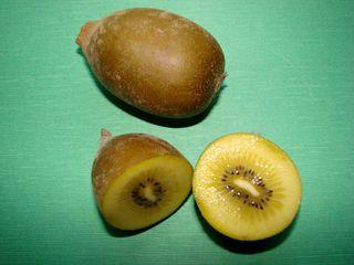 Kiwi - Kiwi, Gold-Kiwi, gelb, Anlaut K, Liane, Chinesischer Strahlengriffel, zweikeimblättrig, Beere, süß, Frucht