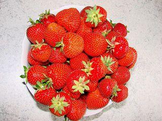 Erdbeeren - Erdbeere, Rosengewächs, Beere, Sammelnussfrucht, rot, süß, Obst, Frucht, Früchte, Marmelade, Kuchen, Kompott