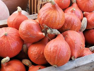 Hokkaidokürbisse - Kürbis, Kürbisse, Hokkaidokürbisse, Gemüse, Lebensmittel, Nahrung, orange