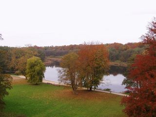 Herbstimpression - Herbst, Jahreszeit, See, Stille, Ruhe, Meditation