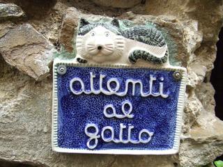 Warnschild - Katze, Warnung, Hinweis, Schild, Italien, italienisch