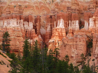 Bryce Canyon #4 - Wüste, Felsnadel, Hoodoo, Nationalpark, Naturwunder, Utah, Sandstein, Kalk, Basalt, Geologie, Gestein, Felsen, USA, Landschaft, Südwesten, Colorado-Plateau, Eisenoxid, Manganoxid, Wüstenklima, Erosion, Sediment