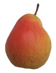 Birne - Birne, Birnen, Obst, Frucht, saftig, Kernobst, Stiel