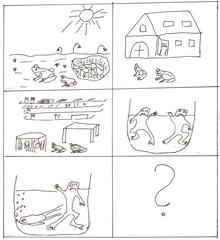 Die beiden Frösche - Bildgeschichte - Fabel, Bildgeschichte, Die beiden Frösche