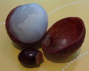Litschi - Hindifrucht, Kern, Seifenbaumgewächs, Litschi, Litsch, Lychee, Chinesische Haselnuss, Litschipflaume, Liebesfrucht