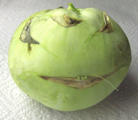Kohlrabi - Kohlrabi, Kohl, Rübe, grün, Gemüse, Küche, Nahrungsmittel, Knolle
