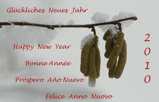 Neujahrswünsche - happy, new, year, feliz, anno, nuovo, felice, año, nuevo, Neujahr, glückliches, Glückwunsch, bonne, année