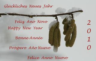 Neujahrswünsche - happy, new, year, feliz, anno, nuovo, felice, año, nuevo, Neujahr, glückliches, Glückwunsch, bonne, année, ano, novo