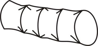 Kriechtunnel - Kriechtunnel, Spielzeug, spielen, turnen, krabbeln, kriechen, Anlaut K