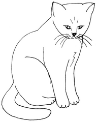 Katze sitzt - Katze, Kätzchen, Haustier, sitzen, Anlaut K, Illustration