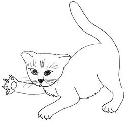 spielende Katze - Katze, Kätzchen, Haustier, spielen, Anlaut K, Illustration, Pfote, Tatze, Wörter mit tz