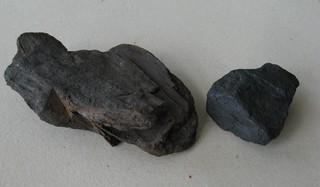 Kohle - Kohle, Steinkohle, Braunkohle, Inkohlung, Kohlenstoff, Brennstoff, brennbar, heizen, Sedimentgestein, Karbonisierung, fossil, Chemie