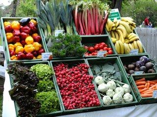 Gemüsestand - Markt, Gemüse, Verkaufsstand, Bio, biologischer Anbau, einkaufen, Paprika, Salat, Lauch, Petersilie, Kohlrabi, Banane, Karotte, Aubergine, Rhabarber, Tomate, Radieschen, Gemüsekiste, Marktstand, Obst