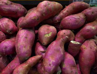 Süßkartoffel - Batate, Süßkartoffel, pomoea batatas, Windengewächs, Knolle, Beilage, Nahrungsmittel